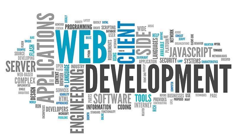 web development software programming